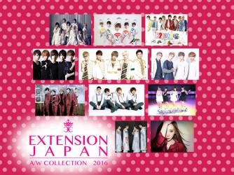 EXTENSION Vol.2