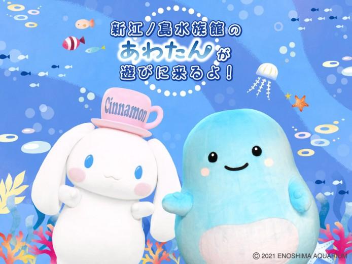 """新江ノ島水族館の""""あわたん""""が遊びに来るよ!"""